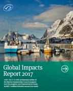 Pesca sostenibile: pubblicato il report MSC sugli impatti globali  - AcquistiVerdi.it