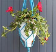 Riciclo creativo: come realizzare un vaso sospeso - AcquistiVerdi.it