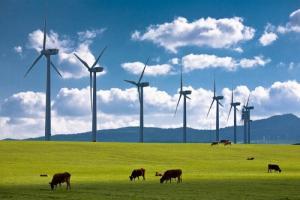 GSE: ecoincentivi fonti energetiche rinnovabili - AcquistiVerdi.it