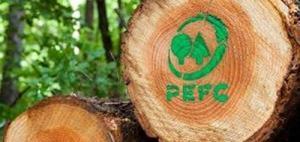 """Premio PEFC """"Comunità Forestali Sostenibili"""" - AcquistiVerdi.it"""