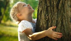 Timber Regulation: per contrastare lo sfruttamento illegale del legno - AcquistiVerdi.it